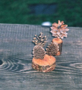 Zapfenbäumchen und 3-er-Zapfenbäumchen