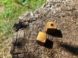 Kühlschrankmagnete aus Holz vom Essigbaum
